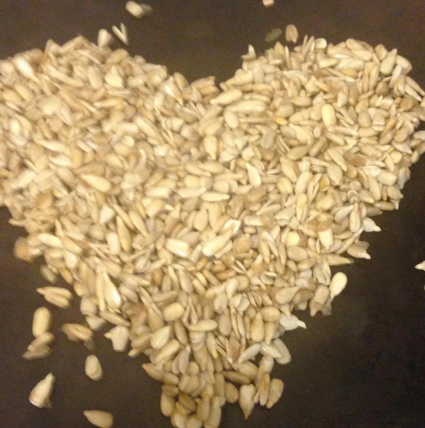 Simple Spicy Probiotic Sunflower Seed HummusRecipe