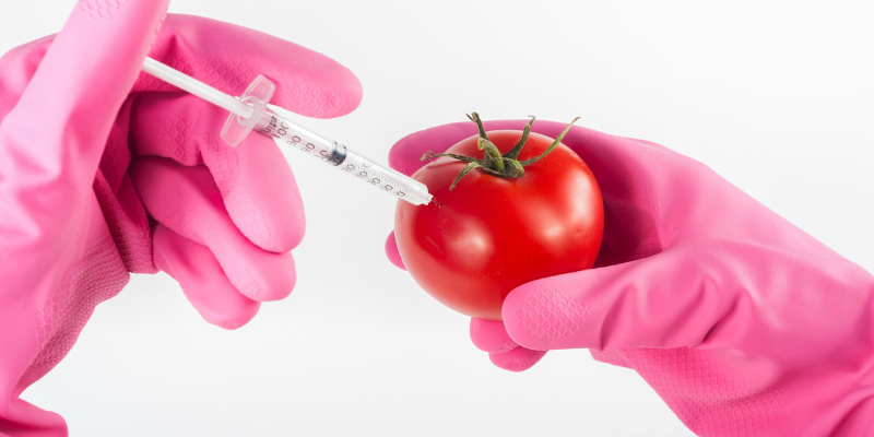 The Dirty Reality Of The GMO Industry And How To Rise Above Their Disingenuous Game